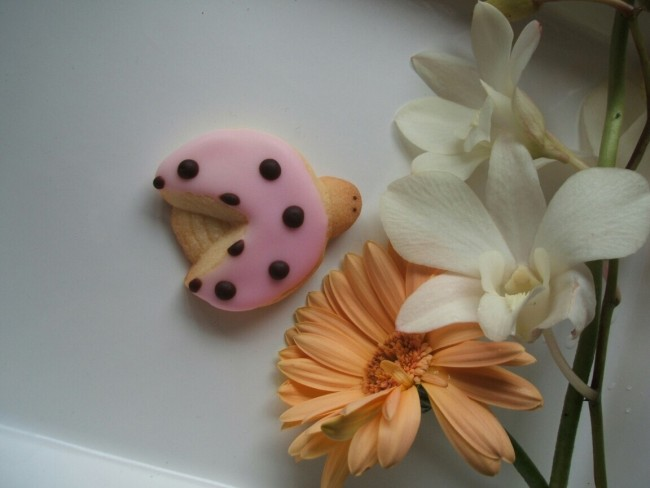 虫や鳥など、春はお菓子の参考になるモチーフばかり!
