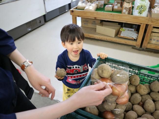 北海道産の玉ねぎとじゃがいも詰め放題で250円!