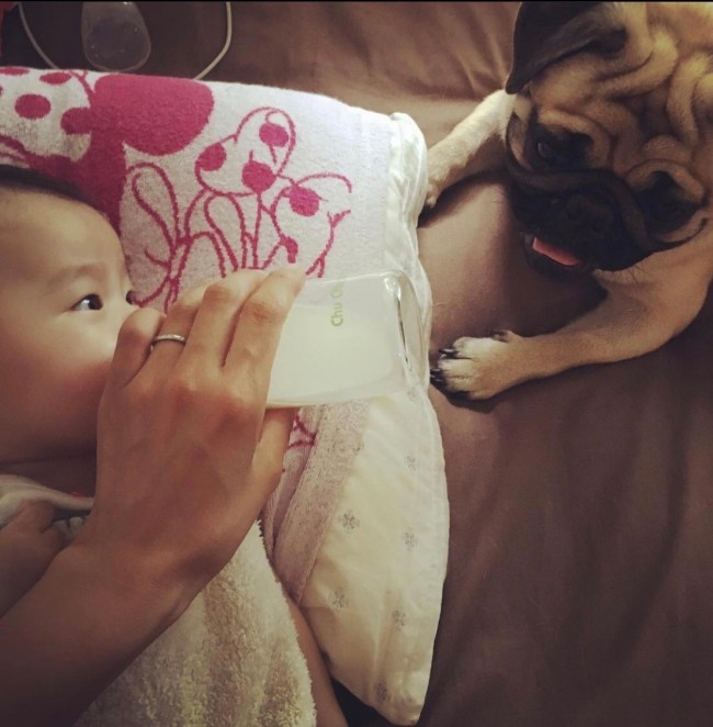 少しずつ、お互いを認識してくる我が子と我が犬。距離が縮まる過程も微笑ましいものです