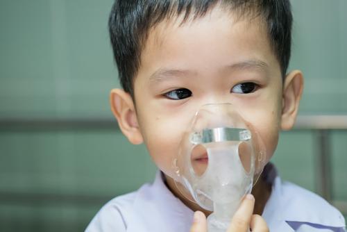湿気によるカビは、呼吸器系疾患の原因にもなります