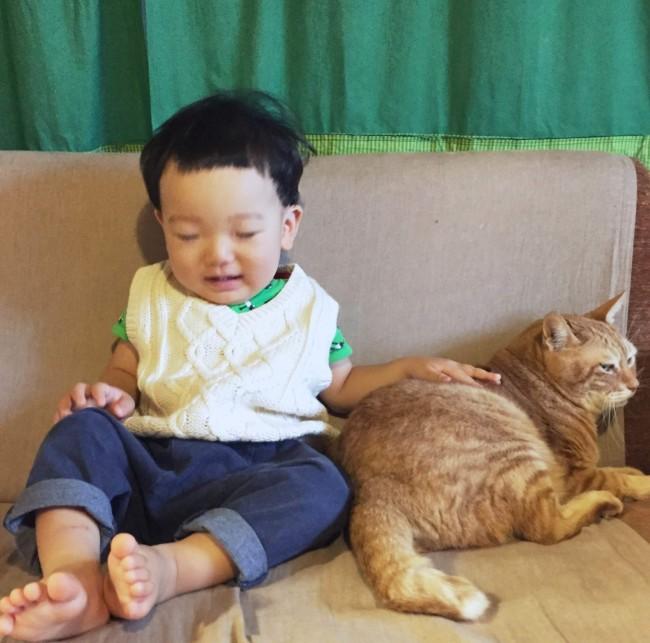 ふたりを見ていると何よりも幸せ♡ しみじみと、猫のいる暮らしはいいなぁと思います