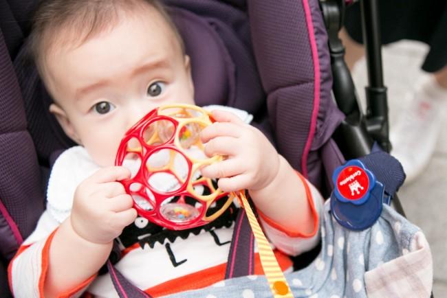 お気に入りのおもちゃはオーボール!