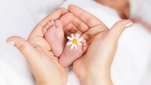 《知りたい、赤ちゃんの靴下事情》手足が冷たいとき…、室内でも靴下って履かせてる? 赤ちゃんの足元冷え対策いろいろ