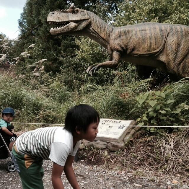 恐竜のいる時代にタイムスリップした感覚が味わえる、福井旅行でした!