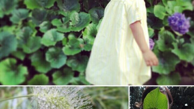 【orioriおやつ vol.10】雨の日もおいしく楽しく! 子どもが大好きゼリーのレシピ♡