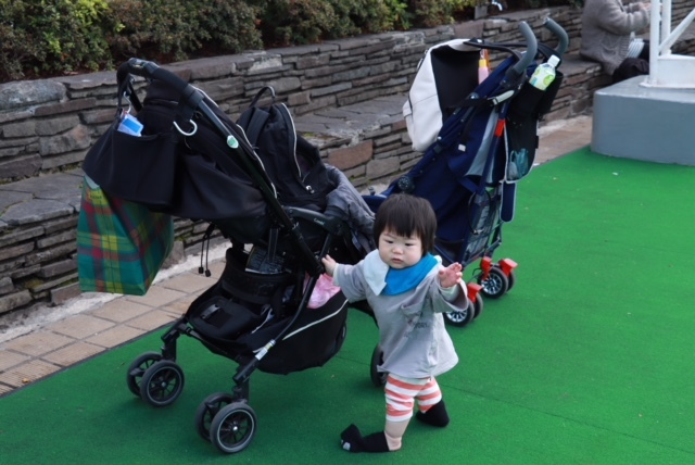 芝生養生中は人工芝エリアで。たくさんの子連れ親子が楽しんでいます