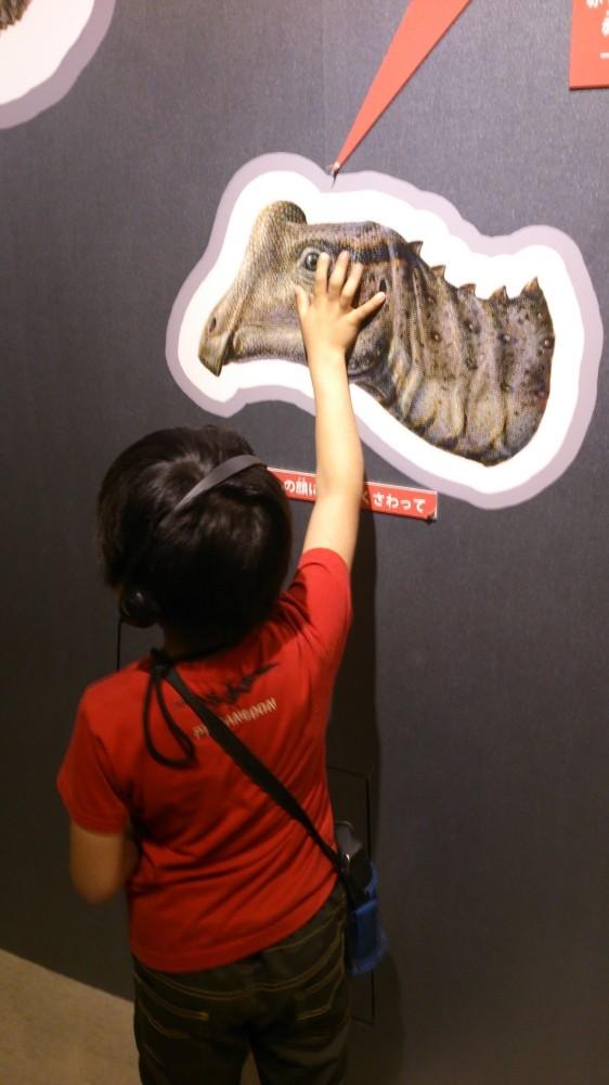 触ったりできるもの面白い! 最新技術による展示は、大人も見応えあります