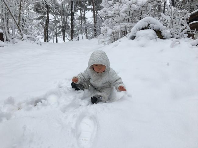 今年の3月、引っ越してきてすぐのころ。静岡育ちの私、寒さというより雪の量に震える。娘は初めの雪におびえる。温暖育ちの軟弱親子はたして今年の冬をのりこえられるのか! 次回に続く!