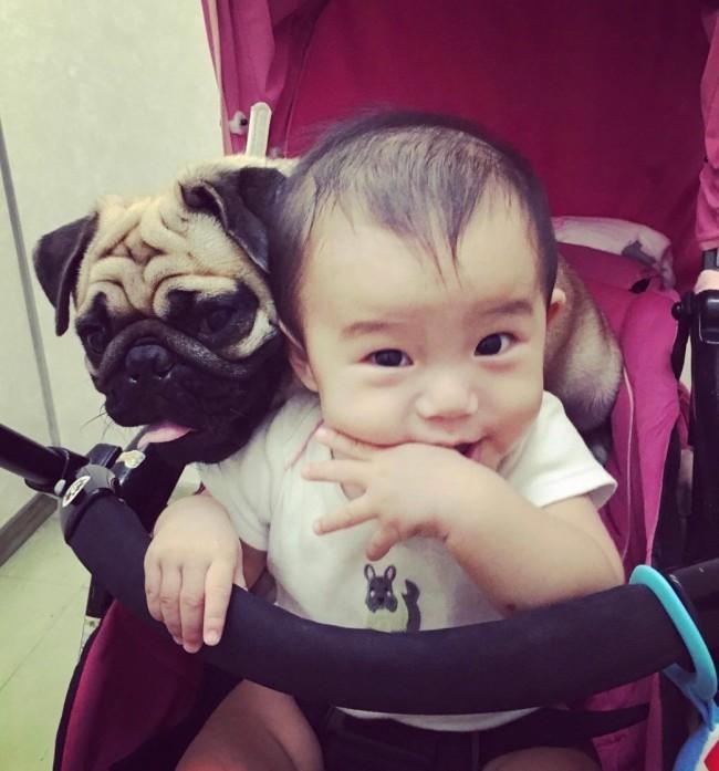 親とも兄弟とも違う時間を、大好きな愛犬と過ごしています
