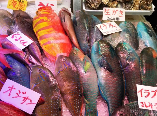 オジサン!? 市場では、普段目にすることのない珍しい魚たちに大興奮!