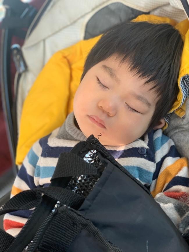 もうお昼寝はほとんどしなくなった息子。ベビーカーでのうたた寝も、時間が短くなってきました