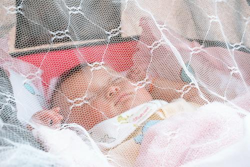 小さなベビー期は、蚊帳のなかにいられますが…
