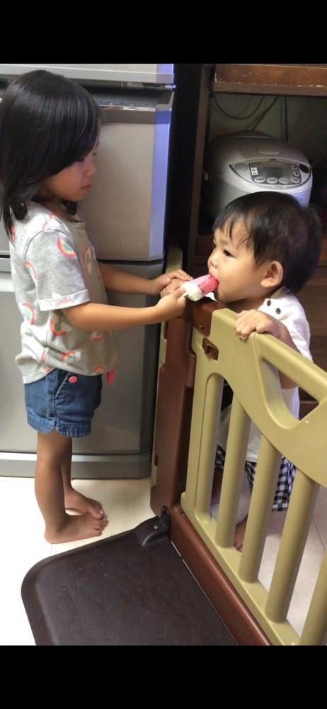 最初は騒いでいた長男も、姉たちと柵ごしのコミュニケーションを楽しめるように