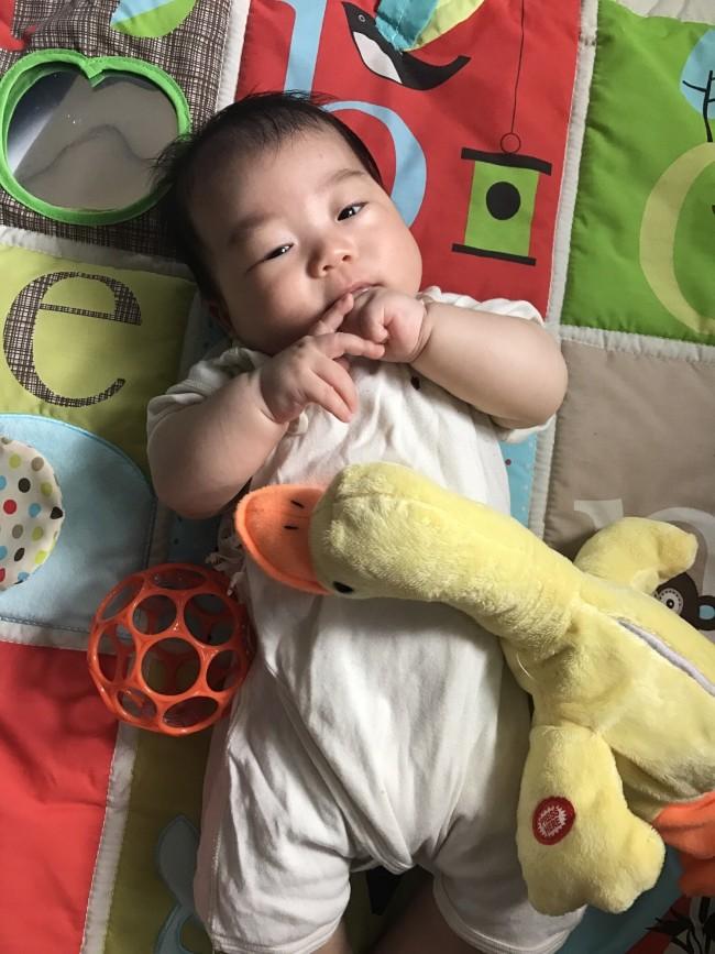 生まれてすぐならオーボールやラトル、少し月齢が過ぎたら知育系の音の出るおもちゃなどが◎