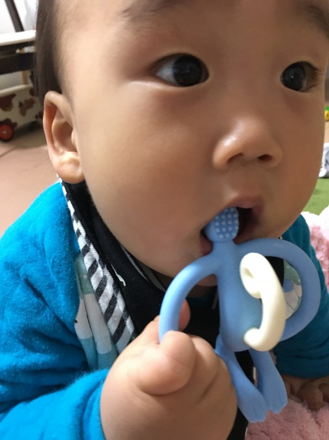 おさるの顔の裏は、生えたての歯のお手入れにも使えます!