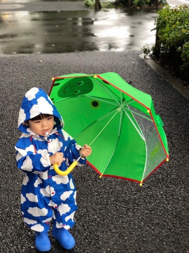 一部透明の傘、もしくはオール透明な傘がオススメ!